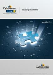 CCNSP V2.1EL Module 11.pdf