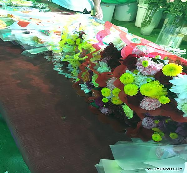 فعاليات مهرجان الورد والفاكهة تبوك