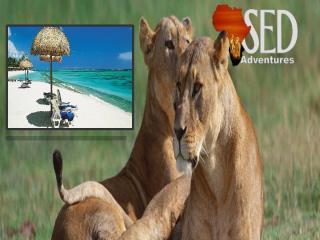 Zanzibar Holiday Safari.pptx