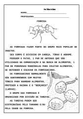 texto informativo sobre as formigas com interpretação.doc